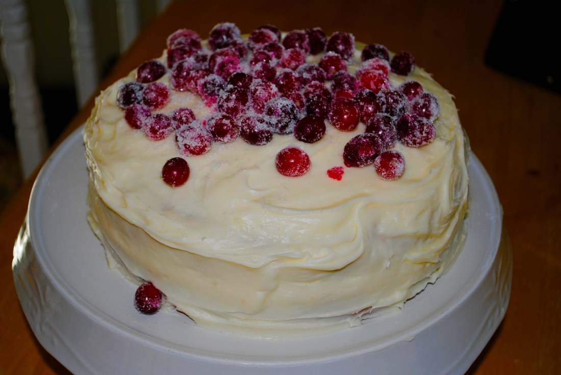 Cranberry orange cake for our book club discussion of With Love from the Inside by Angela Pisel